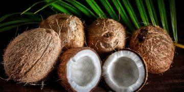 Coco – Significado Y Simbolismo De Los Sueños 6