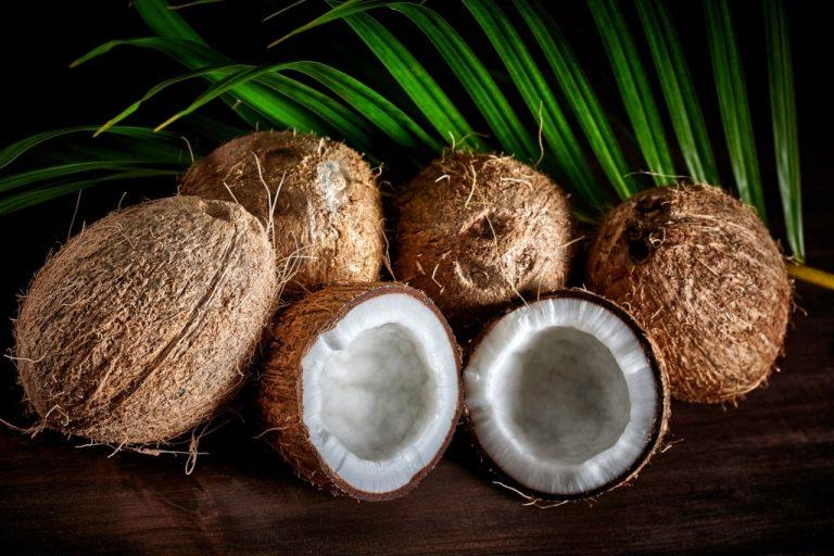 Coco – Significado Y Simbolismo De Los Sueños 1