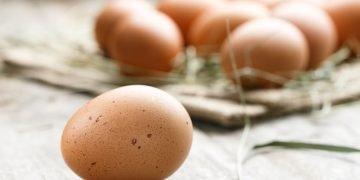 Huevo - Significado Y Simbolismo De Los Sueños 46